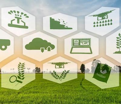 Ứng dụng thành tựu công nghiệp 4.0 đưa nông sản An Giang hướng đến thị trường quốc tế